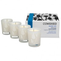 Cowshed Moody Cow Balancing Travel Candles ausgleichende, erdende Duftkerze