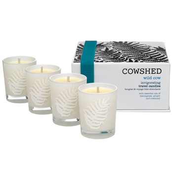 Wild Cow Travel Candles
