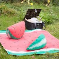 David Fussenegger Picknickdecke SILVRETTA beschichtete Baumwolldecke  130x170cm