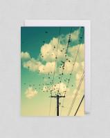 Grusskarten Alicia Bock