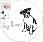 B�gelbild Big bisou