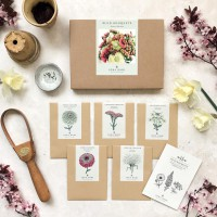 Jora Dahl Wild Bouquets Zinnia Collection Saatgut