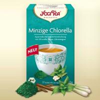 Minzige Chlorella Yogi Tee Bio