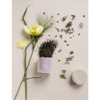 Nu Te - Organic  Öland Tee