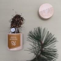 Nu Te Organic Nordic chai Tea Tee