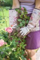 Rosenhandschuhe Classic-Fresh