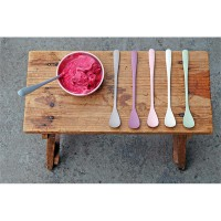 SUNDAES SPOON set of 6 Sorbet spoon